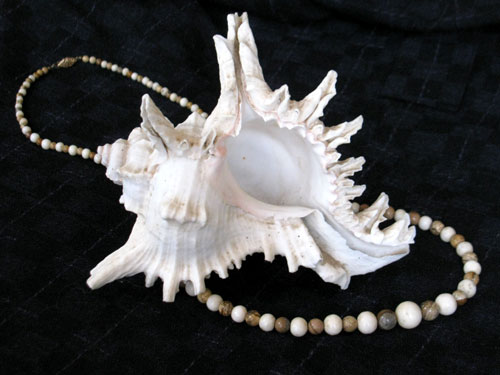 """My """"artsy"""" photo of the coral and jasper necklace surrounding  the intriguing sea shell still pleases my eye, but defies my reproduction in fabric!"""